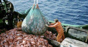 صور ما هي الاشهر التي يحرم الصيد بها