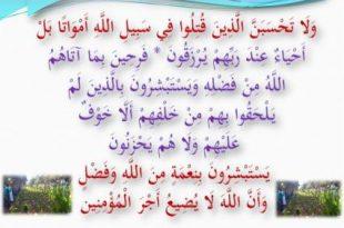 صور اول شهيد في الاسلام من الرجال