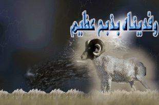 صور كلمة عن سيدنا ابراهيم عندما اراد ان يذبح ابنه
