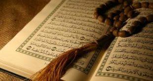 صور كم عدد السجدات في القران الكريم
