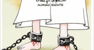 بحث حول حقوق الانسان بالصور