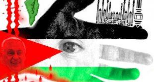صور علم فلسطين , صور رائعة