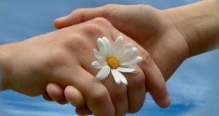 صور يد , صور جميلة