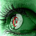 صورة نكت جزائرية , قصائد مضحكة بالجزائرى