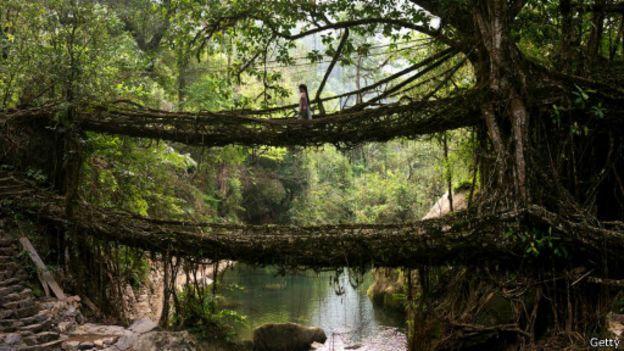 صور اجمل الجسور في العالم