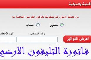 صور الاستعلام عن فاتورة التليفون الارضى من المصرية للاتصالات