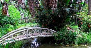 صورة صور حديقة الحامة في دولة الجزائر