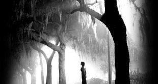 صورة صور الطبيعة الحزينة