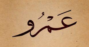 صوره صور اسم عمرو مزخرف