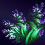 خلفيات ورد , اجمل خلفيات زهور قمة الروعة ورود في غاية الجمال