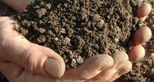 صور التربة و مكوناتها , مكونات التربة