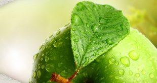 صور هل التفاح الاحمر ينحف