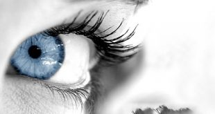 بالصور اجمل نظرات العيون الساحرة بالصور , صور عيون قمة الجمال 16492 3 310x165