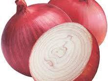 صور البرص والبصل، البصل وفوائده
