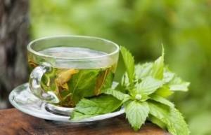 اضرارالشاى الاخضر بالنعناع للرجال,وفوائدة ايضا