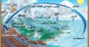 تعريف دورة الماء