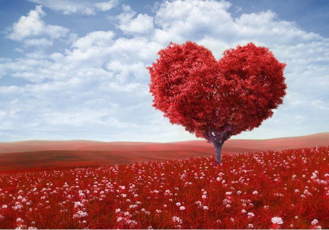 صور تعريف الحب