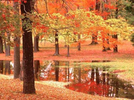 صور اجمل طبيعه في العالم