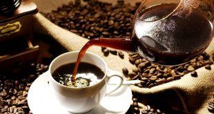 اكل القهوة المحمصة للحامل