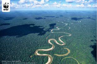 صور ماهو اطول نهر في العالم