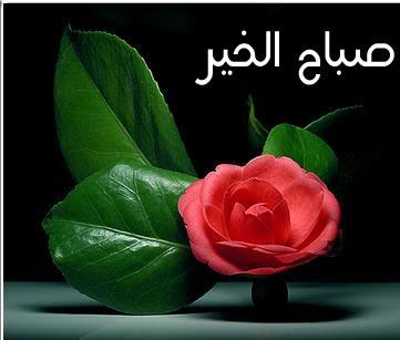 صورة اجمل صور صباح الخير , صور صباح الخير
