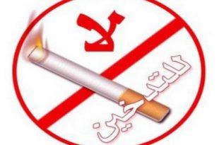صور بحث حول التدخين , اضرار التدخين