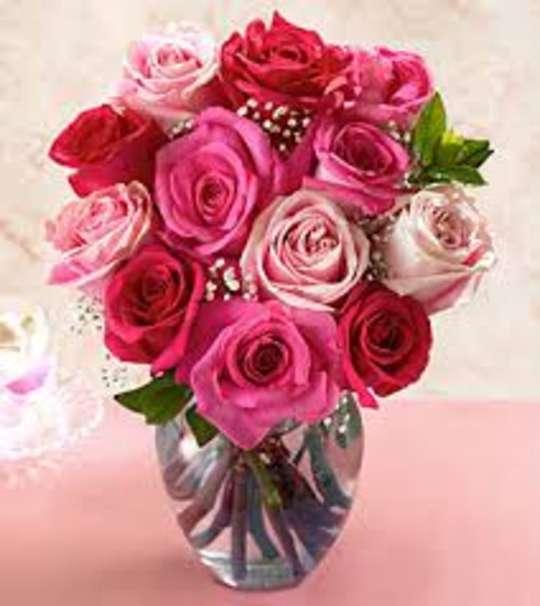 صور زهور جميله ، مجموعة صور للزهور الرائعه والجميله