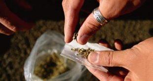 مقال قصير عن المخدرات