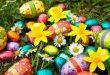 صور موضوع انشاء عن الربيع