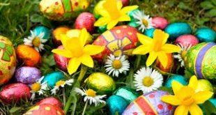 موضوع انشاء عن الربيع