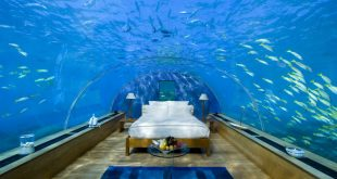 صورة ♥ فندق في جزيره وجميع غرفه داخل البحر وفنادق اخرى كثيرة تحت الماء ♥