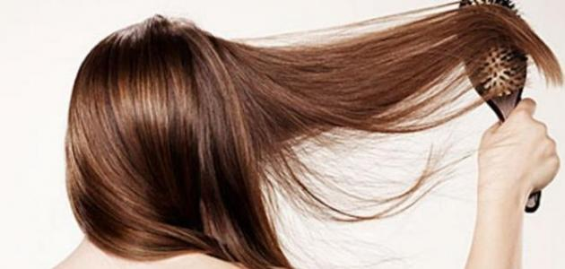 صورة علاج لجفاف الشعر , بعد هذه الوصفة سيزول الجفاف عن تجربه