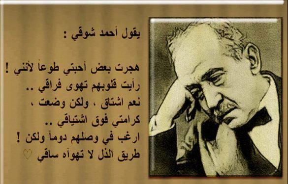 صورة من اجمل ماقيل في العلم قصائد عن العلم روائعة وفريدة